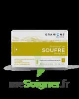 Granions De Soufre 19,5 Mg/2 Ml S Buv 30amp/2ml à BOURBOURG
