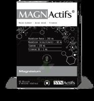 Synactifs Magnactifs Gélules B/60 à BOURBOURG
