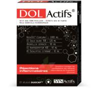 Synactifs Dolactifs Gélules Duocaps B/15 à BOURBOURG