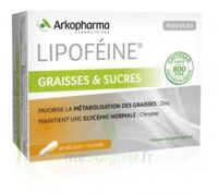 Lipofeine Graisse Et Sucres Gélules B/60 à BOURBOURG