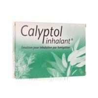 Calyptol Inhalant, émulsion Pour Inhalation Par Fumigation à BOURBOURG