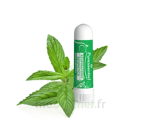 Puressentiel Respiratoire Inhaleur Respiratoire Aux 19 Huiles Essentielles - 1 Ml à BOURBOURG
