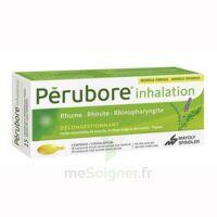 Perubore Caps Inhalation Par Vapeur Inhalation Plq/15 à BOURBOURG