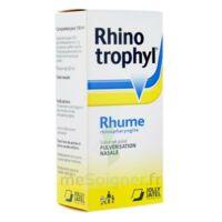 Rhinotrophyl Solution Pour Pulvérisation Nasale 1fl/12ml à BOURBOURG