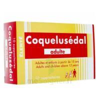 Coquelusedal Adultes, Suppositoire à BOURBOURG
