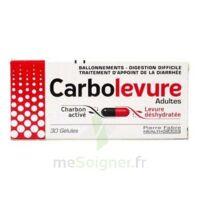 Carbolevure Gélules Adulte Plq/30 à BOURBOURG