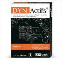 Synactifs Dynactifs Gélules B/30 à BOURBOURG
