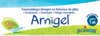 Boiron Arnigel Gel T/120g à BOURBOURG