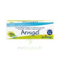 Boiron Arnigel Gel T(alumino-plastique)/45g à BOURBOURG