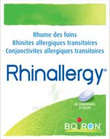 Boiron Rhinallergy Comprimés B/40 à BOURBOURG