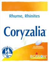 Boiron Coryzalia Comprimés Orodispersibles à BOURBOURG