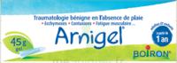 Boiron Arnigel Gel T/45g à BOURBOURG